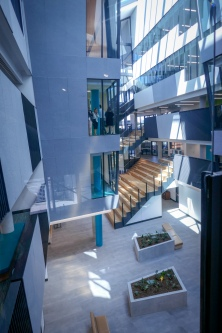 The central atrium with gathering circulation stairs