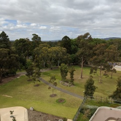 The parkland setting