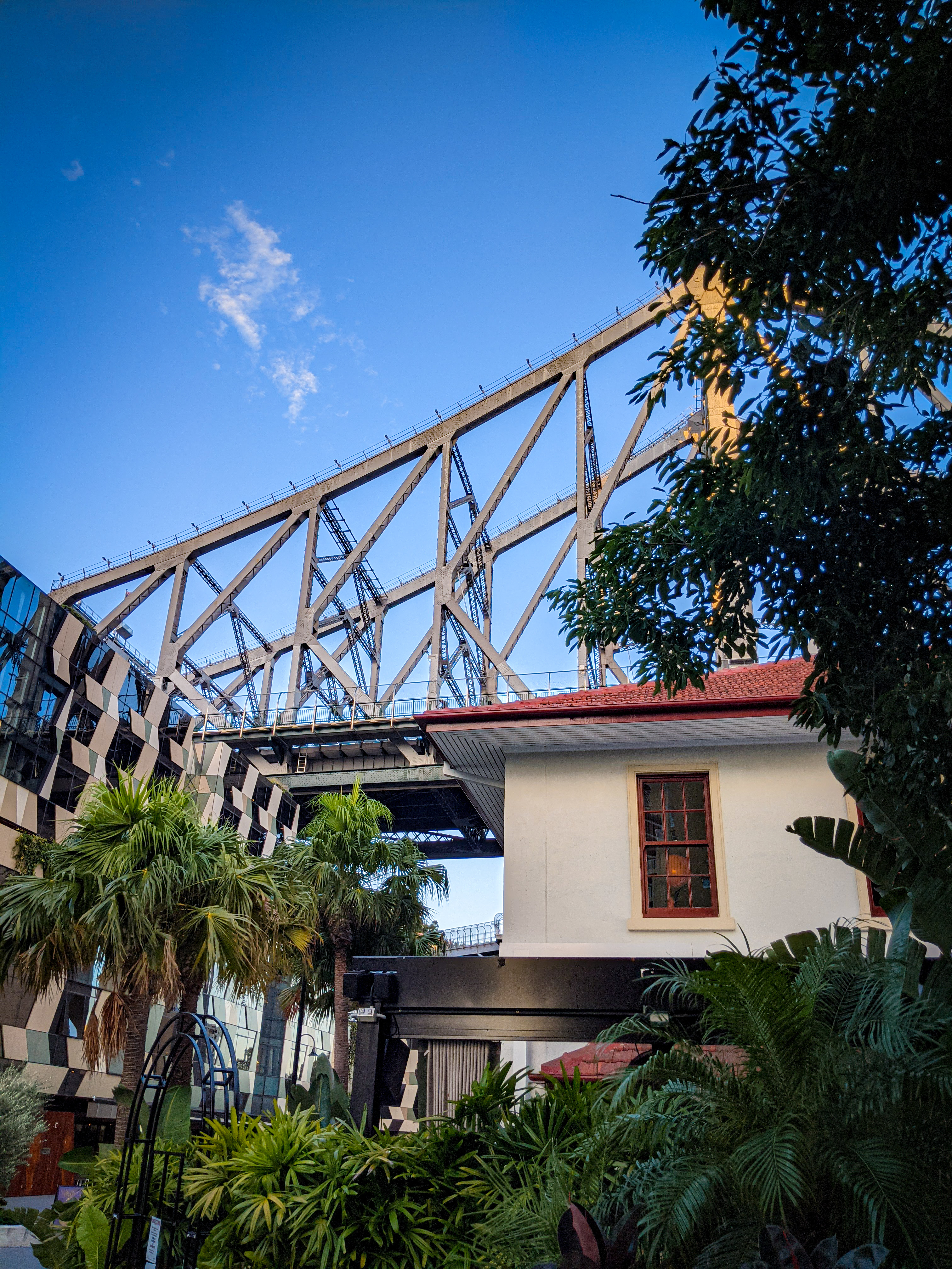 The subtropical landscaping of the Howard Smith Wharves Precinct